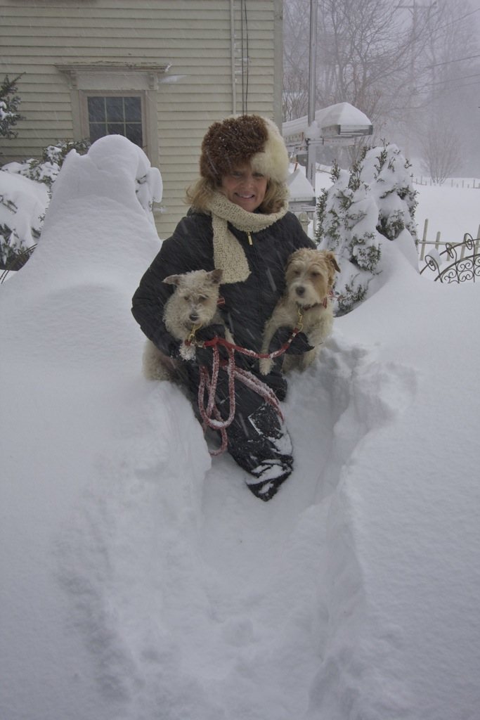 Blizzard 2:9:13 Walking dogs vertical.jpg