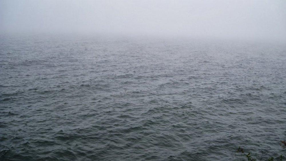 Lake Fog.jpg