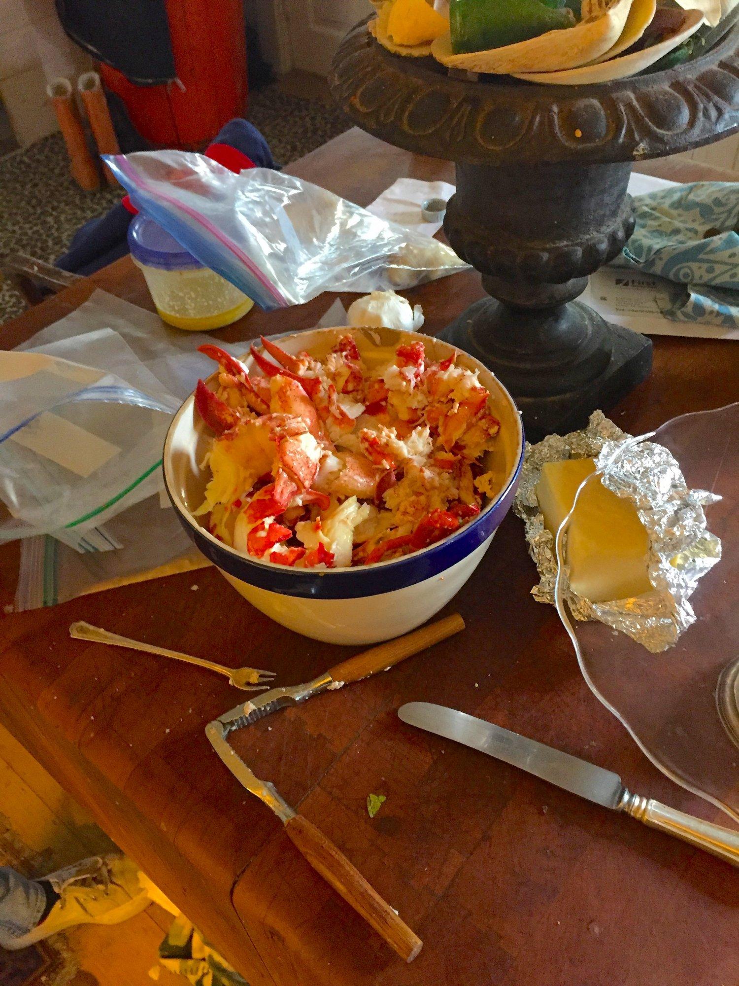 Lobster meat picked .JPG