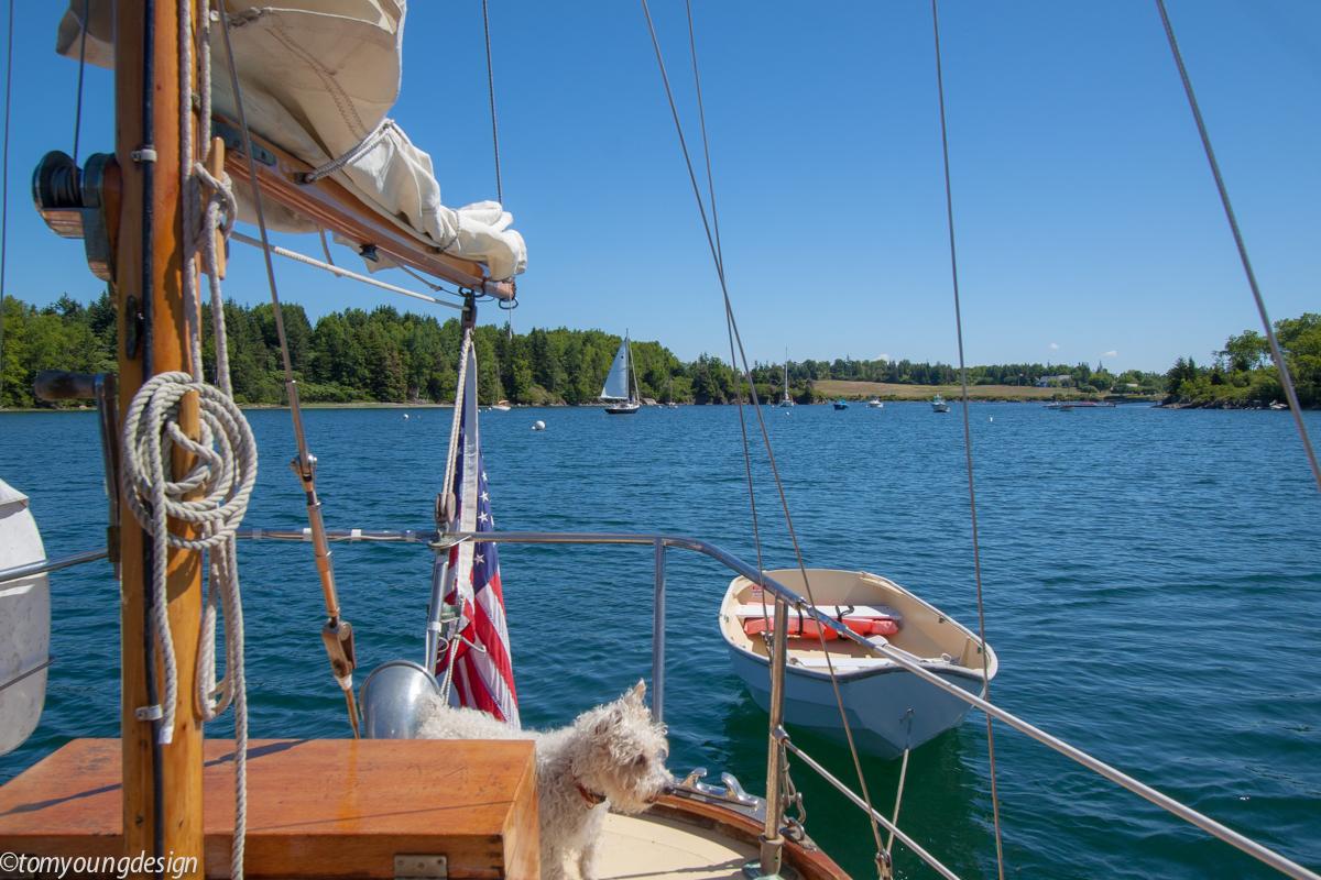 NAMO sailing out.jpg