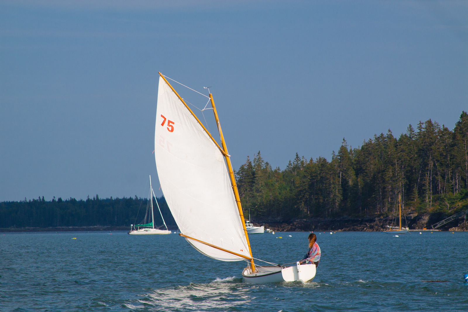 North Haven dinghy.jpg With me, I cannot not sail. .jpg