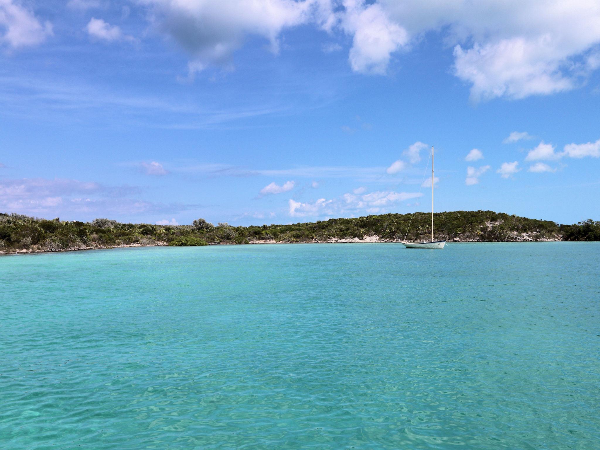 sailboat in the bay.jpg