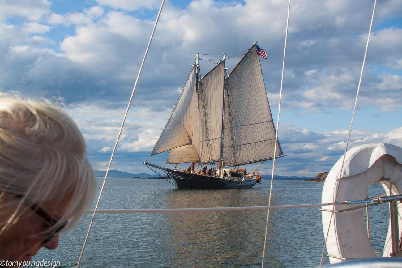 Sails filling.jpg