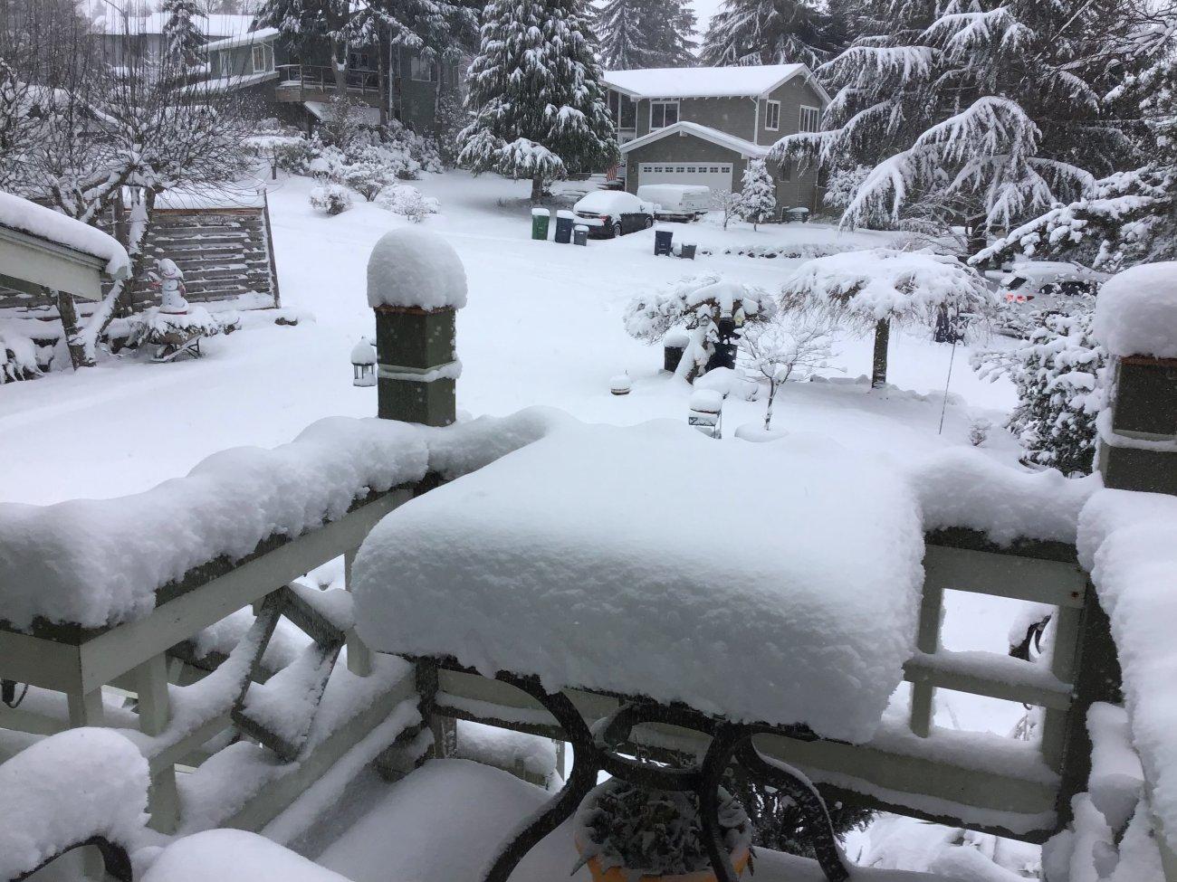 Snow201913.jpg