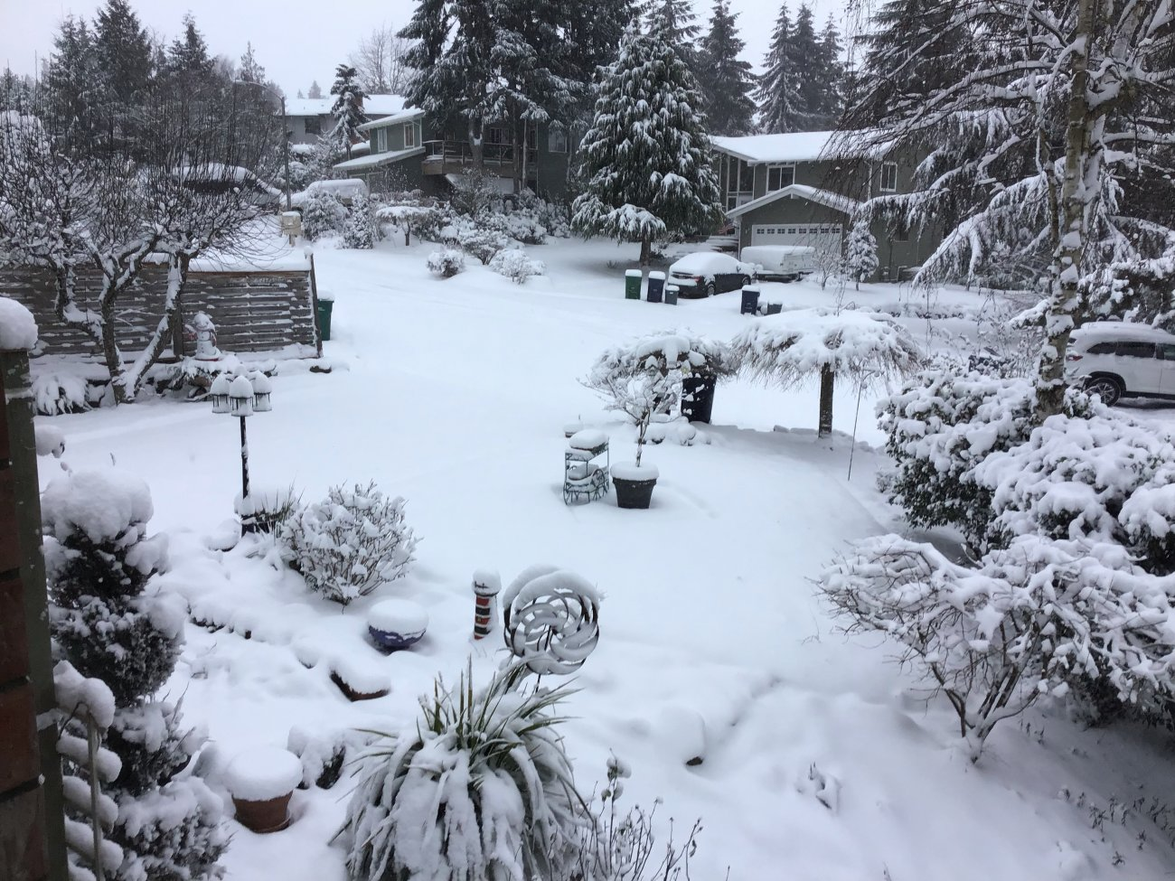 Snow201914.jpg